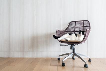 Découpe à façon de pièces adhésive double face et de mousse de calage sur mobilier de bureau
